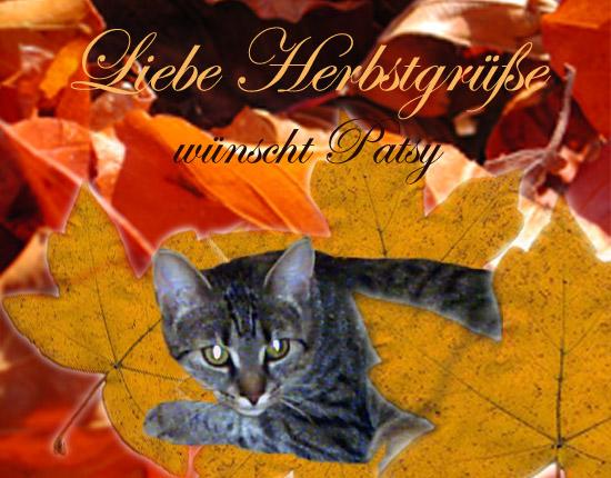 An den Beitrag angehängtes Bild: http://www.odiehome.de/Herbst_GPa_1.jpg