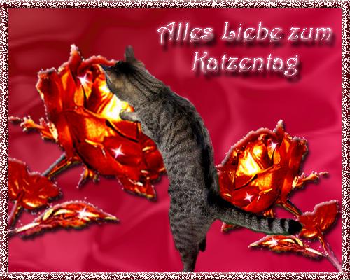 An den Beitrag angehängtes Bild: http://www.odiehome.de/KaTag2008_1.jpg